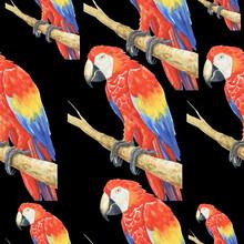 Tropical Parrot Pattern Waterc...
