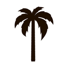 Palm Tree Icon. Tropical Tree....
