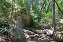 A Hiking Path Through A Creek ...