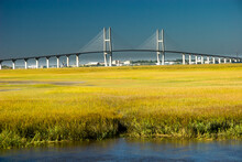 Sidney Lanier Bridge. The Sidn...