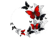 Flight Of Black And Red Butterflies Morpho