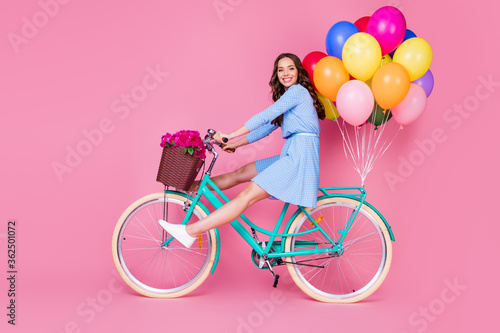 Obraz Full length body size profile side view of attractive cheerful cheery wavy-haired lady riding bike without legs delivering decoration event having fun isolated pink pastel color background - fototapety do salonu