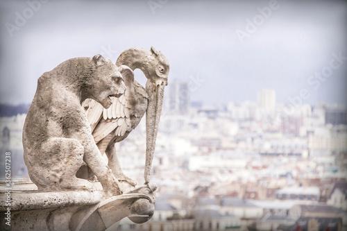 Fotografering Gargoyle (chimera), stone demons with Paris city on background.