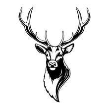 Deer Head. Reindeer Head Isola...