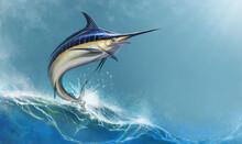 Big Black Marlin Jumps Sea Wav...