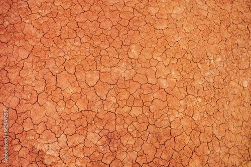 Nature background of cracked dry lands Wallpaper Mural