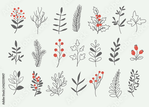 Holly berry branch and winter floral elements set, hand drawn vector illustratio Wallpaper Mural