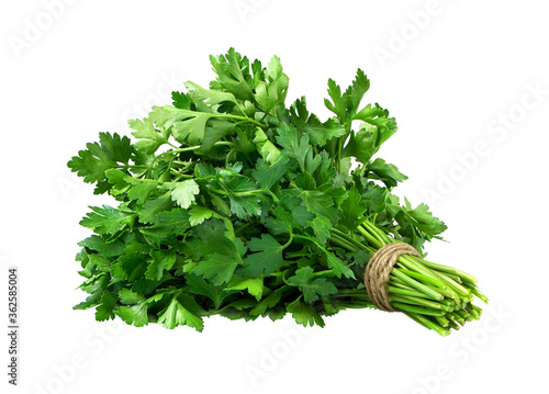 Perfect parsley bunch isolated on white Fototapet