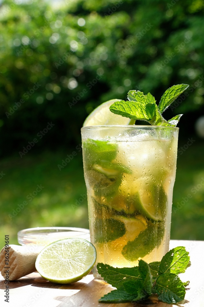 Fototapeta Non Alcoholic Mojito In Cocktail Glass On Wooden Table. Ice Cubes, Pepper Mint Leaves, And Ice Cubes
