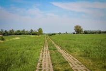 Ein Feldweg Oder Der Ehemalige...