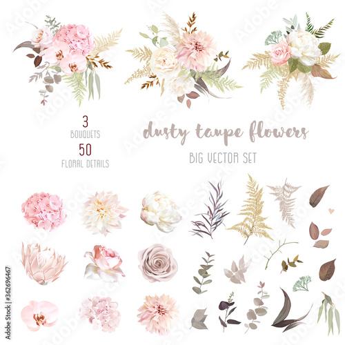 Dusty pink and ivory beige rose, pale hydrangea, peony flower, fern, dahlia Wallpaper Mural