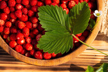 A Wooden Bowl Of Red Ripe Wild...
