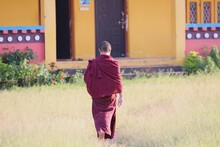 Rear View Of Buddhist Monk Wal...