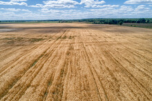 Agricultural Fields, Countrysi...