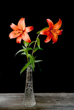 Orange Lilies In A Glass Vase ...