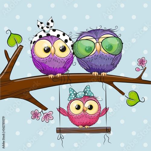 Fototapeta Owls on a branch and a chick on the swings obraz