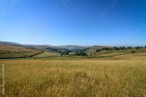 Fotomural Scenic View Of Landscape Against Clear Blue Sky