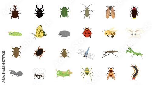 Foto かわいい昆虫のイラストセット