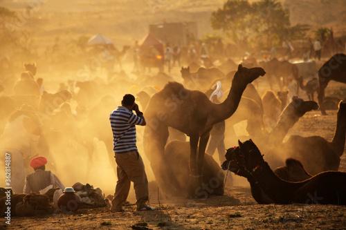 A photographer shoots photos of Camel trade fair at Pushkar fair Canvas Print