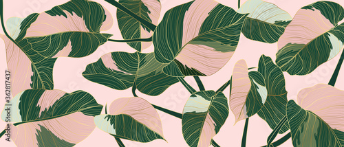 Luxury gold line art and Variegated Plants nature drawing background vector Fototapete