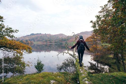 Woman Walking On Fallen Tree Over Lake