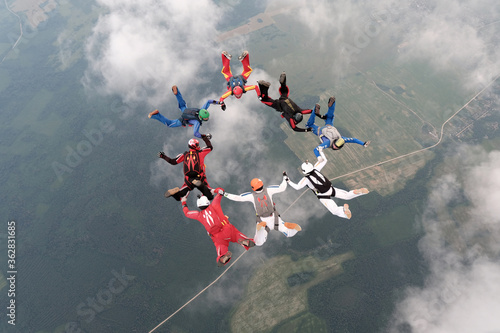 Fototapeta Skydiving. Formations. A group of skydivers is in the sky.
