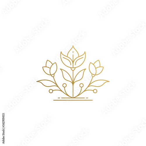 Fototapeta Linear icon of growing flower hand drawn with thin lines obraz