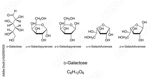 Photo Galactose, Gal, monosaccharide, chemical structure