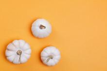 White Autumn Pumpkins On Yello...
