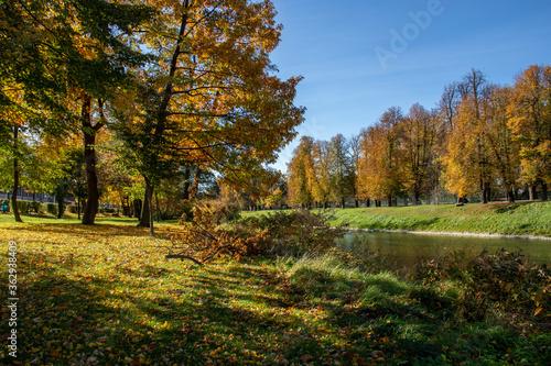 Jesień nad brzegiem rzeki - fototapety na wymiar
