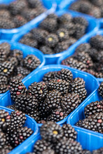 Containers Of Fresh Blackberries At A Farmers Market
