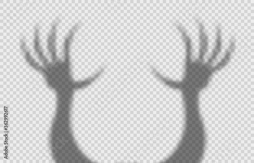 Fotografie, Obraz Shadow overlay effect for halloween background with scary hands with long nails