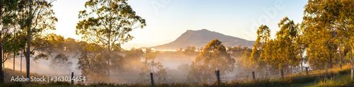 Fotografia, Obraz Panoramic Shot Of Trees On Mountains Against Sky