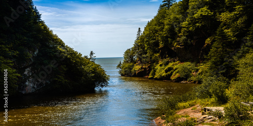 Scenic View Of River Amidst Trees Against Sky Canvas Print