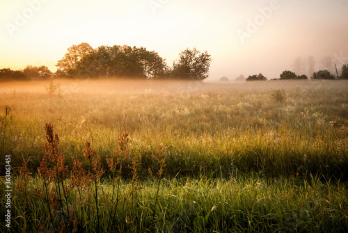 Obraz Scenic View Of Grassy Field Against Sky - fototapety do salonu