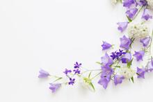 Violet Wild Flowers On White B...