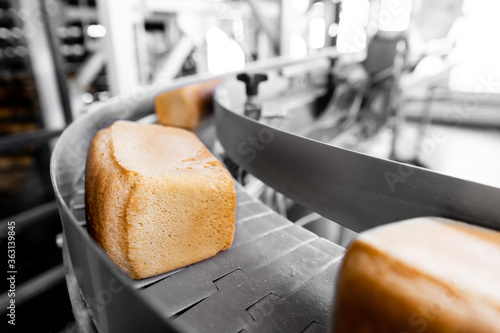 Fototapeta Fresh hot baked breads on automated production line bakery. Manufacture industrial obraz