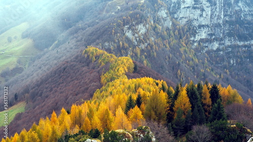 Larch waterfall on Monte Altissimo di Nago Wallpaper Mural
