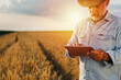 farmer using tablet computer outdoor in wheat field
