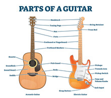 Parts Of Acoustic And Electric Guitar Labeled Structure Vector Illustration