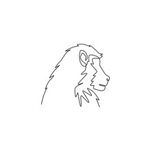 One Continuous Line Drawing Of Baboon Head For Conservation Jungle Logo Identity. Primate Animal Mascot Concept For National Park Icon. Trendy Single Line Draw Graphic Design Vector Illustration