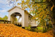 Gilkey Covered Bridgewith Fall...