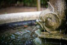 Fish Head Statue Fountain In T...
