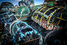 Close-up Of Fishing Net At Har...