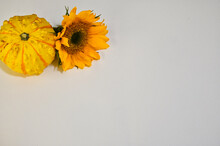 White Background For Autumn Graphics With Yellow Gourd And Gold Sunflower In Corner