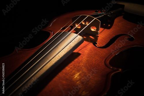 Fototapeta Violin 1