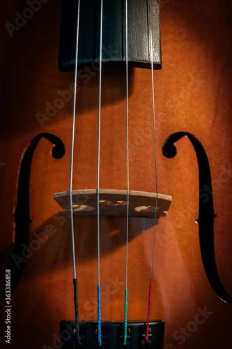 Fotografie, Obraz Violin 2
