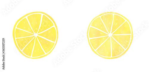 Photo 輪切りレモン 水彩