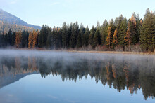 Reflection Of Trees In Lake Ag...