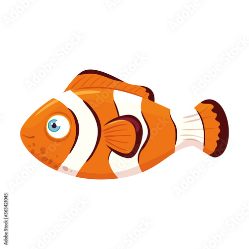 sea underwater life, anemone fish, clownfish on white background vector illustra Fototapet